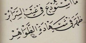 حكم ابن عطاء الله السكندري – أبو الوفاء الغنيمي التفتازاني