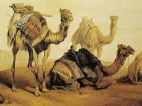 رحلة ابن فضلان – خالد زيادة