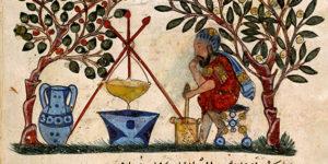 الطب العربي – سليمان قطانة