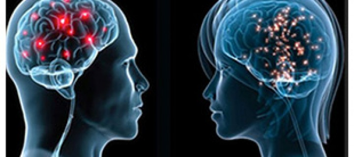 دماغه و دماغها – لاري كاهيل