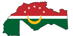 الحركات الوطنية والاستعمار في المغرب العربي – محمد المالكي