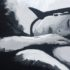 قضية القاتل النائم – جيمس ڤلاهوس