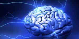لغة الدماغ – تيري سيجنوفسكي و توبي ديلبروك