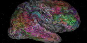 لغة الدماغ – تيري سيجنوفسكي وتوبي ديلبروك