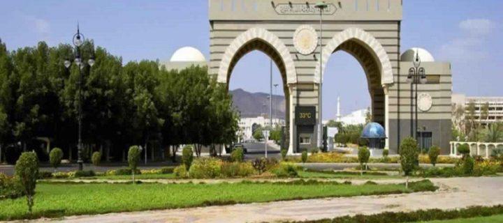 فكرة الجامعة الإسلامية بين السلطنة العثمانية والمغرب الأقصى – عبدالرؤوف سنو