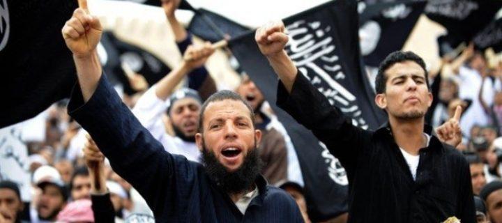 الخطاب السلفي بين التطرف الديني والتلون السياسي – محمد عبده أبو العلا