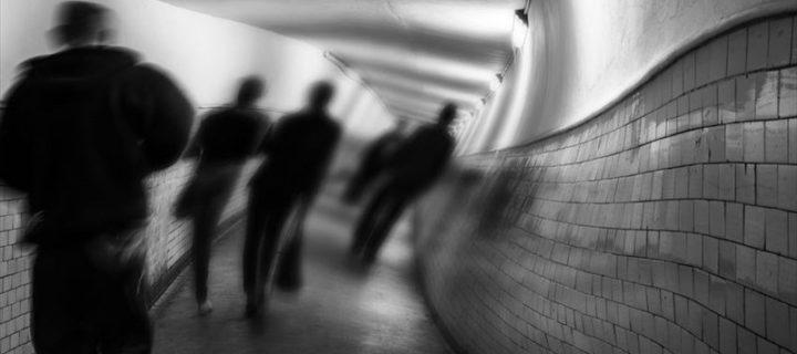 كشف بعض خفايا الفُصام – دانيل جاڤيت، جوزيف كويل