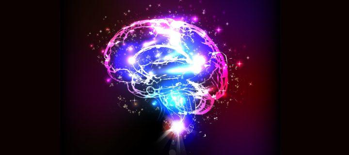 السحر والدماغ – مارتينيز كوندي وماكنيك