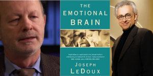 """التفكير والشعور: مراجعة كتاب """"الدماغ الانفعالي"""" – جوزيف ليدوكس / مراجعة: داماسيو"""