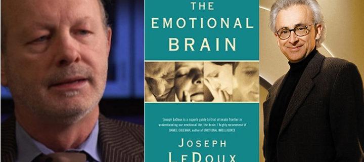 """التفكير والشعور: مراجعة كتاب """"الدماغ الإنفعالي"""" – جوزيف ليدوكس / مراجعة: داماسيو"""