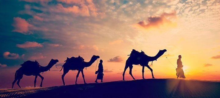 الدار و الهجرة و أحكامها عند ابن المرتضى: دراسة في ظهور المسألة وتطورها عند الزيدية – رضوان السيد