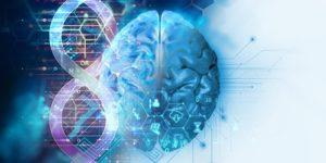 الجغرافيا الجينية للدماغ – لين & هوريليش