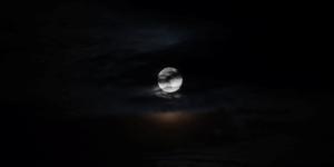 مقدمة كتاب: الظلام يتهاوى متتابعاً – كاي جاميسون / ترجمة: طلال العمري
