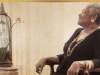 قصيدة: الطائر المحبوس في قفصه – مايا أنجلو / ترجمة: نهى العتيبي