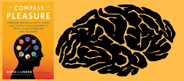 التزاوج والسلوك الجنسي عند البشر والحيوانات – ديفيد ليندن / ترجمة: خالد البدراني