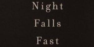 الظلام يتهاوى متتابعاً: سيكولوجية الانتحار – كاي جاميسون / ترجمة: هدى متبولي، طلال العمري