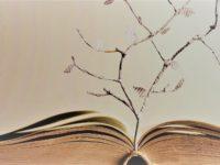 قواعد النحو العربي وتأثير المنطق الأرسطي – أحمد غنيم