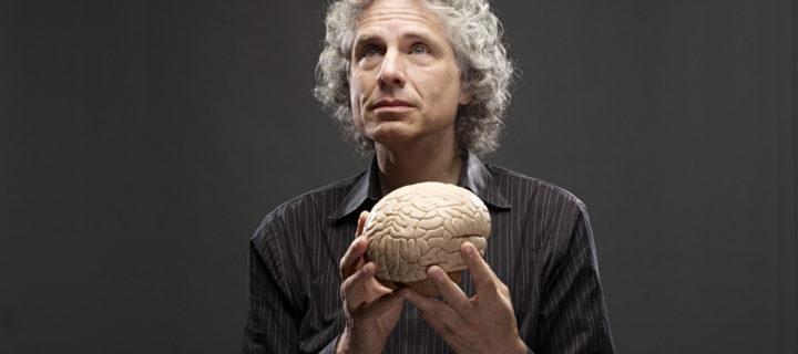 فيديو: اللغويات كنافذة لفهم الدماغ – ستيفن بينكر / ترجمة: آية علي