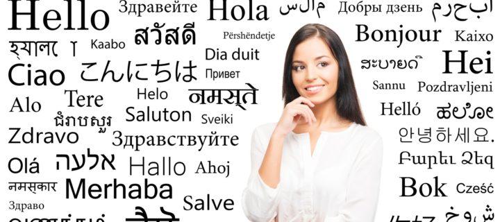 دليل حكمة للمترجم