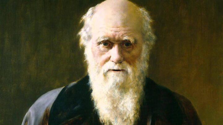 داروين والنساء - آن سميث / ترجمة: سارة اللحيدان