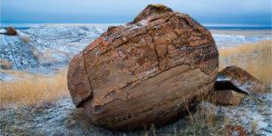 الحياة الخاصة للأحجار – جون دافيد / ترجمة ناصر الحلواني