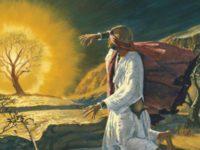 التجربة الدينية – موسوعة ستانفورد للفلسفة / ترجمة: إسلام سعد