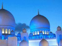 الثقافة والهوية في الشرق الأوسط: كيف تؤثران على الحكم – دايل آيكلمن / ترجمة: منادي عبد الباسط