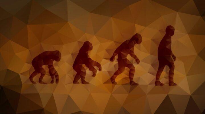 دراسة مسح جيني تميط اللثام عن أوجه جديدة حول نظرية التطور