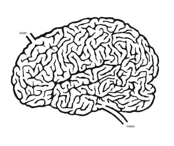 كيف للجينات تشكيل عقولنا؟ الأمر معقد! - كيفين ميتشل/ ترجمة: همام المرتضي