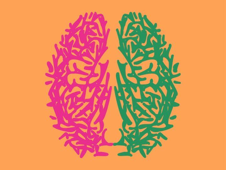 ثنائية اللغة تغيّر هندسة دماغك – ليزي ويد / ترجمة: دلال السليمان