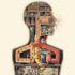 الرأسمالية والفصام: برنامج لـ الآلات الراغبة – جيل دولوز وفليكس غاتاري / ترجمة: وليام عوطة