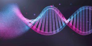 الوراثة السلوكية (1) – روبرت سابولسكي