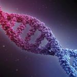 الوراثة السلوكية سابولسكي روبرت