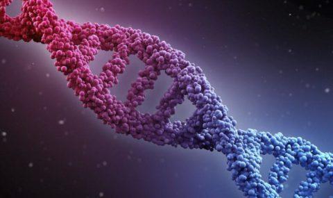 الوراثة السلوكية (2) – روبرت سابولسكي