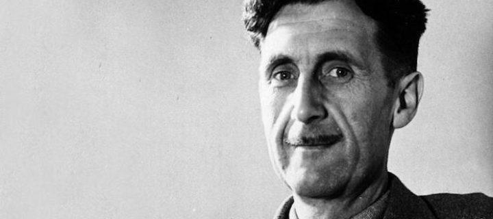 كيف تصبح كاتبًا عظيمًا: جورج أورويل – هاري ستيد / ترجمة: الهنوف الحربي
