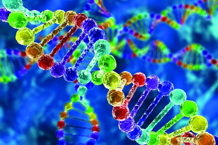 شرح العرق و علم الوراثة والعلم