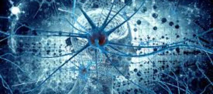 مقدمة لعلم الأعصاب – نيثان وودلينغ، انثوني تشونغ مينغ