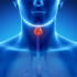 الغدد الصماء والهرمونات – ويليام بيترسون وتوم ماكفادن