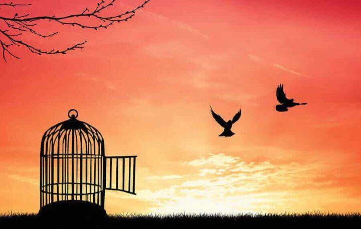 في الحرية – أندري كونت سبونفيل / ترجمة: جواد آيت سليمان