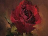 الوردة والنطاسي – عدي جاسر الحربش