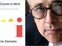 من تنظيم الحياة إلى القيمة البيولوجية – أنطونيو داماسيو / ترجمة: إيمان معروف