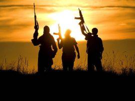 الإرهاب الارهاب موسوعة ستانفورد